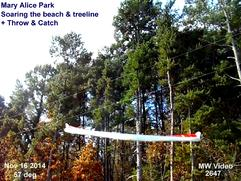 George Ferris of Martin Wing soaring the beach & Tree line + thermals at Mary Alice Park , Lake Lanier Ga